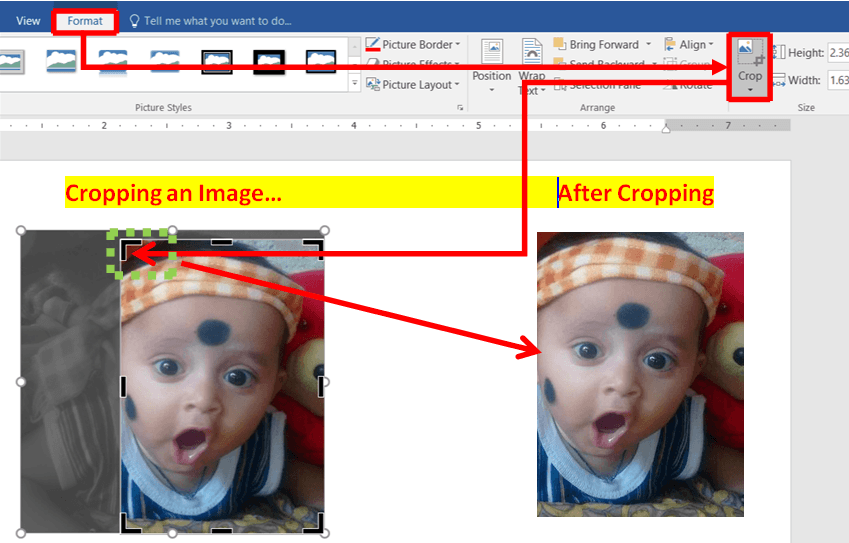 Cropping-an-Image in MS Word