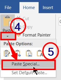 Paste Special in microsoft word