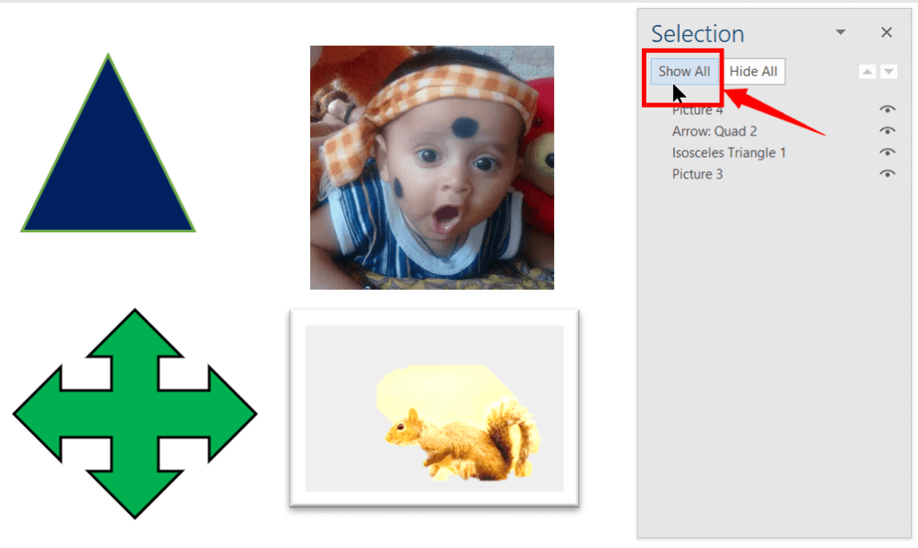 Show All the Objects in the Selection Pane