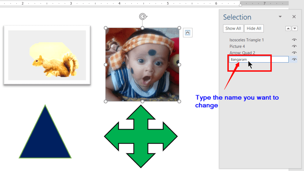 Rename the object using the Selection Pane