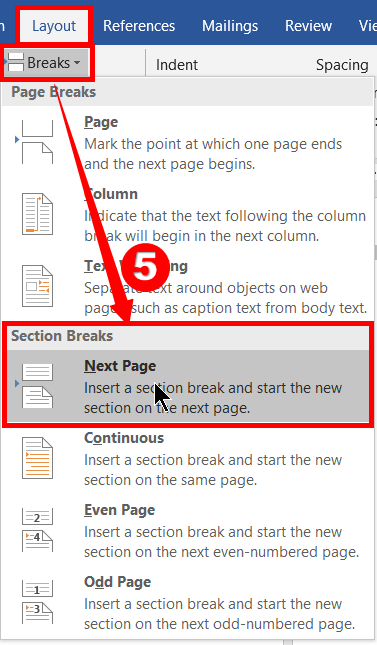 Section Break for the next pages in ms word